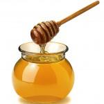 miel dans aquarelle