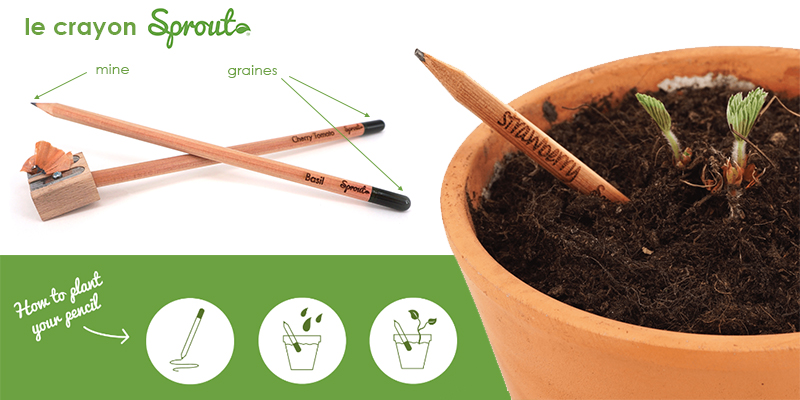 dessin écologique sprout