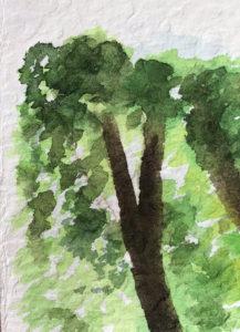 papier aquarelle flamboyant grain