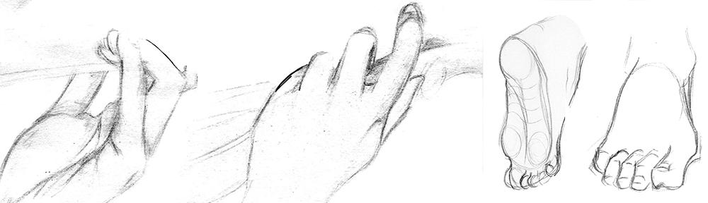 les mains et les pieds