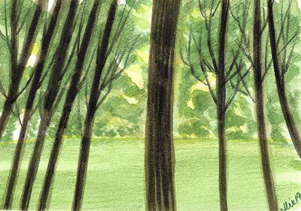 Forêt européenne destinée au papier. Peinte à l'aquarelle.