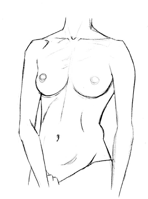 dessin de torse féminin vu de face